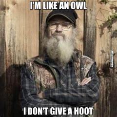 Si owl meme